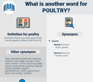 poultry, synonym poultry, another word for poultry, words like poultry, thesaurus poultry