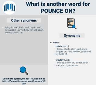 pounce on, synonym pounce on, another word for pounce on, words like pounce on, thesaurus pounce on