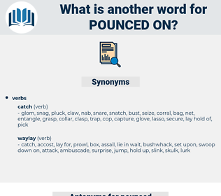 pounced on, synonym pounced on, another word for pounced on, words like pounced on, thesaurus pounced on