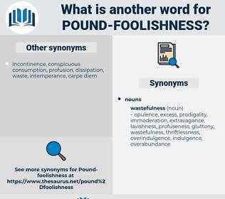 pound-foolishness, synonym pound-foolishness, another word for pound-foolishness, words like pound-foolishness, thesaurus pound-foolishness