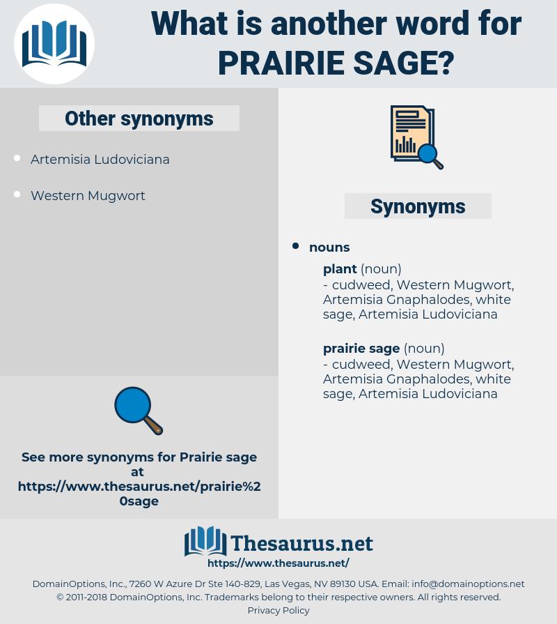 prairie sage, synonym prairie sage, another word for prairie sage, words like prairie sage, thesaurus prairie sage