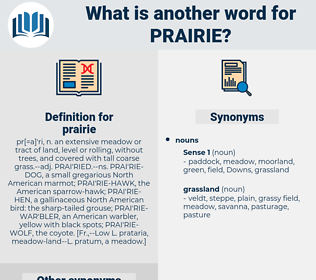 prairie, synonym prairie, another word for prairie, words like prairie, thesaurus prairie