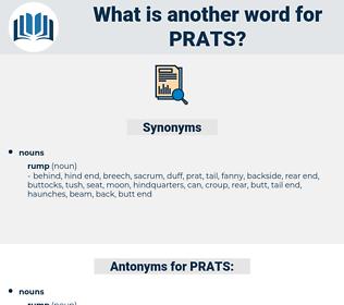PRATS, synonym PRATS, another word for PRATS, words like PRATS, thesaurus PRATS