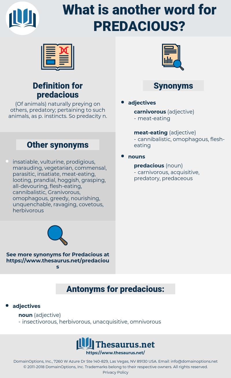 predacious, synonym predacious, another word for predacious, words like predacious, thesaurus predacious