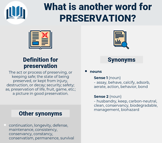 preservation, synonym preservation, another word for preservation, words like preservation, thesaurus preservation
