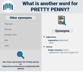 pretty penny, synonym pretty penny, another word for pretty penny, words like pretty penny, thesaurus pretty penny