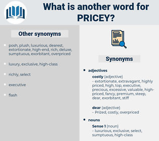 pricey, synonym pricey, another word for pricey, words like pricey, thesaurus pricey