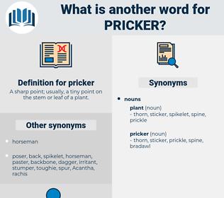 pricker, synonym pricker, another word for pricker, words like pricker, thesaurus pricker