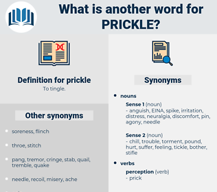 prickle, synonym prickle, another word for prickle, words like prickle, thesaurus prickle