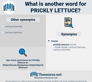 prickly lettuce, synonym prickly lettuce, another word for prickly lettuce, words like prickly lettuce, thesaurus prickly lettuce