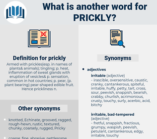 prickly, synonym prickly, another word for prickly, words like prickly, thesaurus prickly