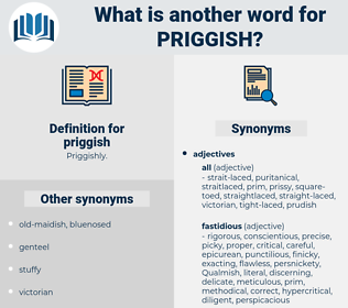 priggish, synonym priggish, another word for priggish, words like priggish, thesaurus priggish