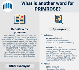 primrose, synonym primrose, another word for primrose, words like primrose, thesaurus primrose