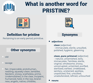 pristine, synonym pristine, another word for pristine, words like pristine, thesaurus pristine