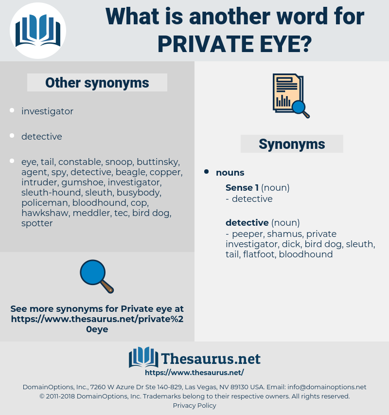 private eye, synonym private eye, another word for private eye, words like private eye, thesaurus private eye