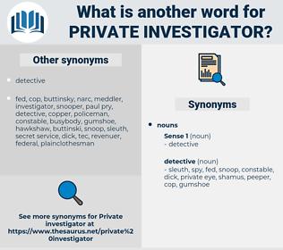 private investigator, synonym private investigator, another word for private investigator, words like private investigator, thesaurus private investigator