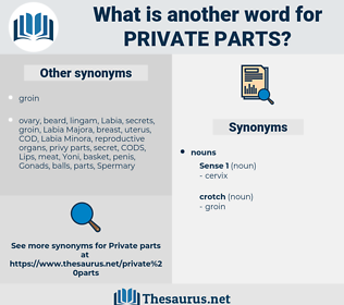 private parts, synonym private parts, another word for private parts, words like private parts, thesaurus private parts