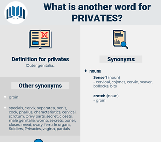 privates, synonym privates, another word for privates, words like privates, thesaurus privates