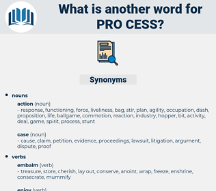 pro cess, synonym pro cess, another word for pro cess, words like pro cess, thesaurus pro cess