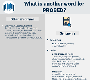 Probed, synonym Probed, another word for Probed, words like Probed, thesaurus Probed