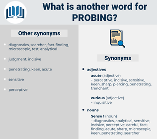 probing, synonym probing, another word for probing, words like probing, thesaurus probing