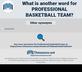 professional basketball team, synonym professional basketball team, another word for professional basketball team, words like professional basketball team, thesaurus professional basketball team