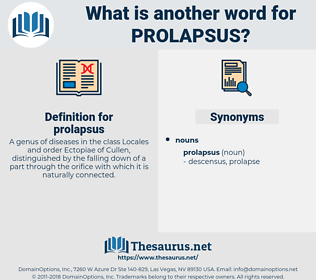 prolapsus, synonym prolapsus, another word for prolapsus, words like prolapsus, thesaurus prolapsus