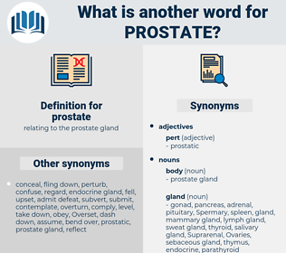 prostate, synonym prostate, another word for prostate, words like prostate, thesaurus prostate