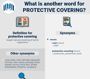 protective covering, synonym protective covering, another word for protective covering, words like protective covering, thesaurus protective covering