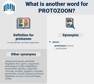 protozoon, synonym protozoon, another word for protozoon, words like protozoon, thesaurus protozoon