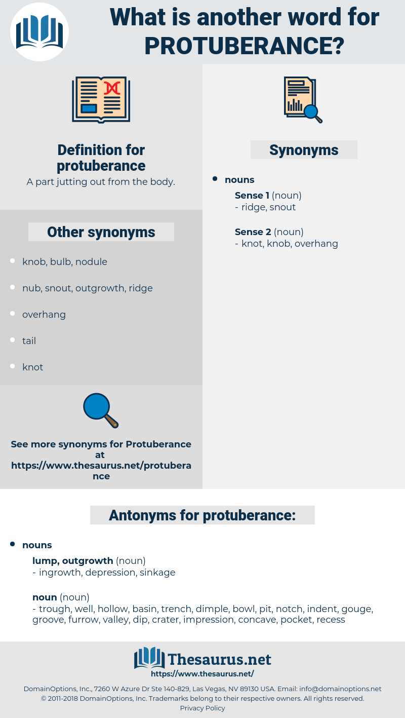 protuberance, synonym protuberance, another word for protuberance, words like protuberance, thesaurus protuberance