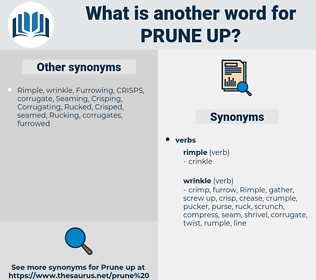 prune up, synonym prune up, another word for prune up, words like prune up, thesaurus prune up