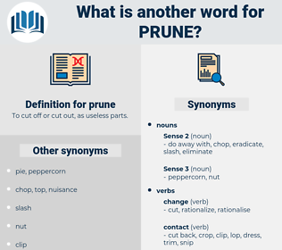 prune, synonym prune, another word for prune, words like prune, thesaurus prune