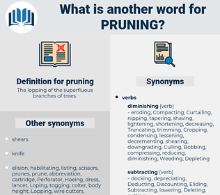 pruning, synonym pruning, another word for pruning, words like pruning, thesaurus pruning
