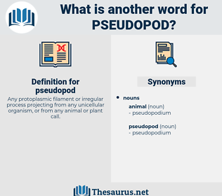 pseudopod, synonym pseudopod, another word for pseudopod, words like pseudopod, thesaurus pseudopod