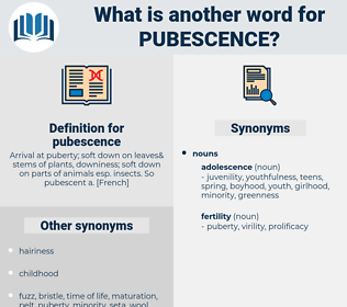 pubescence, synonym pubescence, another word for pubescence, words like pubescence, thesaurus pubescence