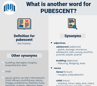 pubescent, synonym pubescent, another word for pubescent, words like pubescent, thesaurus pubescent