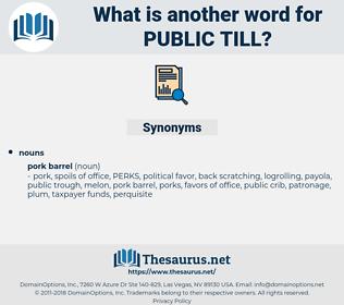 public till, synonym public till, another word for public till, words like public till, thesaurus public till