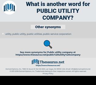 public utility company, synonym public utility company, another word for public utility company, words like public utility company, thesaurus public utility company