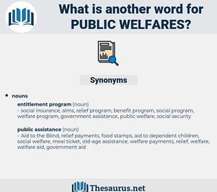 public welfares, synonym public welfares, another word for public welfares, words like public welfares, thesaurus public welfares