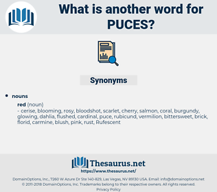 puces, synonym puces, another word for puces, words like puces, thesaurus puces