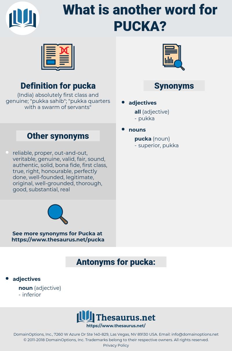 pucka, synonym pucka, another word for pucka, words like pucka, thesaurus pucka