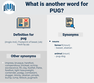 pug, synonym pug, another word for pug, words like pug, thesaurus pug