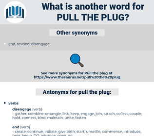 pull the plug, synonym pull the plug, another word for pull the plug, words like pull the plug, thesaurus pull the plug