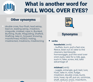 pull wool over eyes, synonym pull wool over eyes, another word for pull wool over eyes, words like pull wool over eyes, thesaurus pull wool over eyes