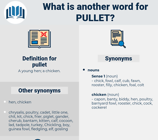 pullet, synonym pullet, another word for pullet, words like pullet, thesaurus pullet