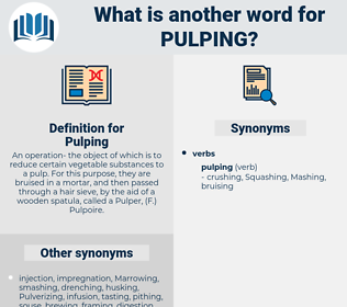 Pulping, synonym Pulping, another word for Pulping, words like Pulping, thesaurus Pulping