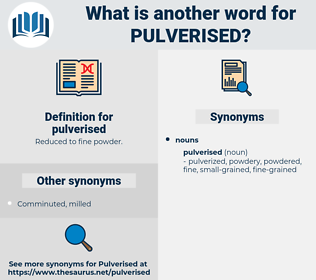 pulverised, synonym pulverised, another word for pulverised, words like pulverised, thesaurus pulverised