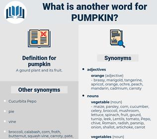pumpkin, synonym pumpkin, another word for pumpkin, words like pumpkin, thesaurus pumpkin