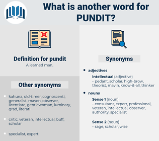 pundit, synonym pundit, another word for pundit, words like pundit, thesaurus pundit